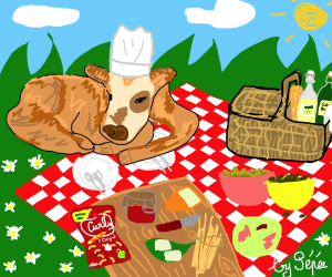 picnic-normand-curly